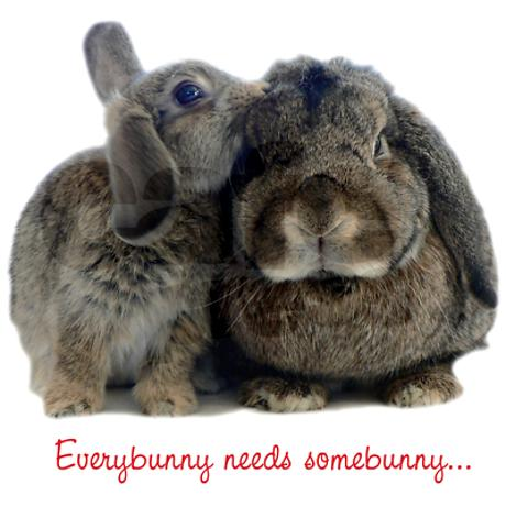 Glendon Place - Everybunny Needs Somebunny - Market Limited Edition